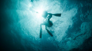 Freediving-Cebu-PADI Freediving course in Moalboal, Philippines-1