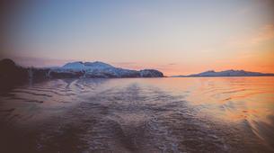Voile-Tromsø-Midnight Sun sailing in Tromsø-3
