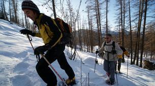 Raquette à Neige-Parc National des Ecrins-Ascension de la Tête d'Oréac en Raquettes à Puy St Vincent, les Ecrins-3
