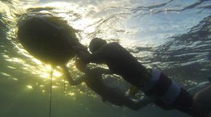 Freediving-Cebu-AIDA 1 course Moalboal, Philippines-6