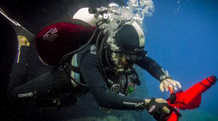Scuba Diving-Rhodes-Scuba diving PADI courses in Rhodes Island-2