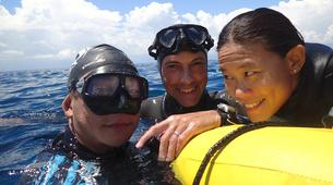 Apnée-Cebu-Discover freediving at Moalboal, Philippines-6