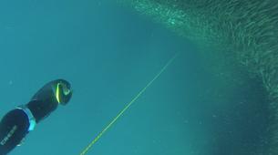 Freediving-Cebu-AIDA 1 course Moalboal, Philippines-4