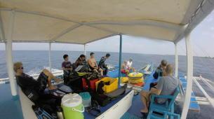 Apnée-Cebu-Discover freediving at Moalboal, Philippines-2