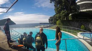 Scuba Diving-Terceira-Scuba Diving PADI courses in Terceira, Azores-6