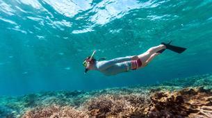 Snorkeling-Zanzibar-Snorkelling excursion in Mnemba Atoll, Zanzibar-2