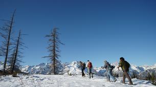 Raquette à Neige-Parc National des Ecrins-Ascension de la Tête d'Oréac en Raquettes à Puy St Vincent, les Ecrins-2