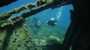 Scuba Diving-Kythnos-Shipwreck scuba diving in Kythnos-4