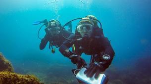 Scuba Diving-Terceira-Adventure dives in Terceira, Azores-4