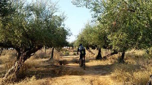 Mountain bike-Athens-Mountain bike tours in Sounio, Athens-3