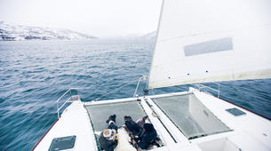 Voile-Tromsø-Midnight Sun sailing in Tromsø-4