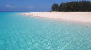 Snorkeling-Zanzibar-Snorkelling excursion in Mnemba Atoll, Zanzibar-6