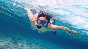 Snorkeling-Zanzibar-Snorkelling excursion in Mnemba Atoll, Zanzibar-4