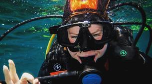 Scuba Diving-Malta-PADI Discover Scuba Diver in Qawra, Malta-1