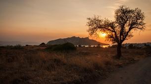 Mountain bike-Athens-Aegina Island mountain biking tour from Athens-9
