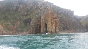 Experiences Wildlife-Mbotyi-Sardine run in Mboyti near Durban-1