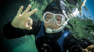 Snorkeling-Malta-Snorkeling excursion in Blue Lagoon, Malta-3
