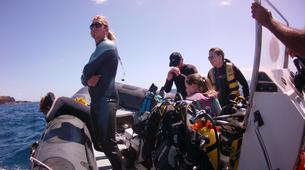 Scuba Diving-Costa Adeje, Tenerife-First scuba dive in Costa Adeje, Tenerife Island-6