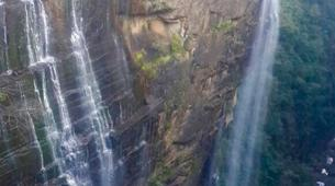 Wildlife Experiences-Mbotyi-Sardine run in Mboyti near Durban-23
