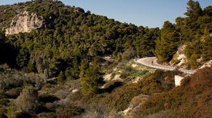 Mountain bike-Athens-Aegina Island mountain biking tour from Athens-3