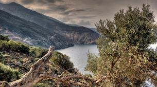 Mountain bike-Athens-2 Day mountain biking tour from Athens to Karystos-8