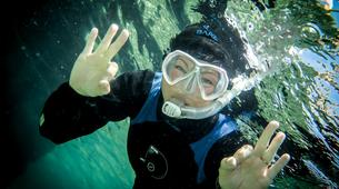 Snorkeling-Malta-Snorkeling excursion in Blue Lagoon, Malta-5