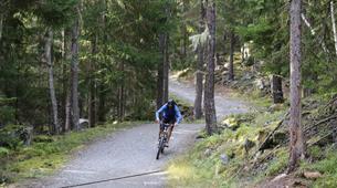 Vélo de Descente-Chamonix Mont-Blanc-Randonnée VTT à Chamonix-2