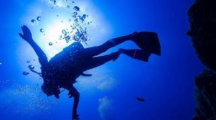 Scuba Diving-Costa Adeje, Tenerife-First scuba dive in Costa Adeje, Tenerife Island-3
