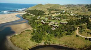Wildlife Experiences-Mbotyi-Sardine run in Mboyti near Durban-17