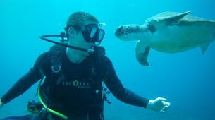 Scuba Diving-Costa Adeje, Tenerife-PADI Open Water Diver course in Costa Adeje, Tenerife Island-2