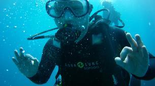 Scuba Diving-Costa Adeje, Tenerife-First scuba dive in Costa Adeje, Tenerife Island-2