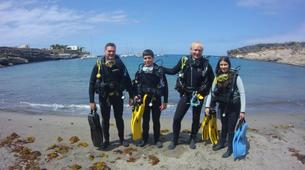 Scuba Diving-Costa Adeje, Tenerife-Try dive in Costa Adeje, Tenerife-4