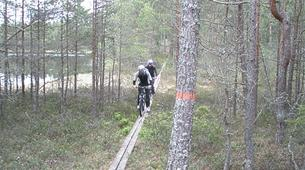 VTT-Stockholm-Mountain biking excursion in Stockholm-4
