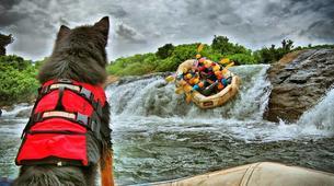 Rafting-Jinja-Rafting excursions down the Nile, Jinja-5