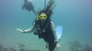 Scuba Diving-Costa Adeje, Tenerife-Try dive in Costa Adeje, Tenerife-5