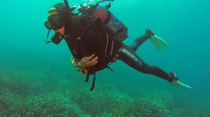 Scuba Diving-Malta-PADI Open Water Diver in Exiles Bay, Malta-1