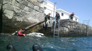 Plongée sous-marine-Costa Adeje, Tenerife-PADI Open Water Diver course in Costa Adeje, Tenerife-5