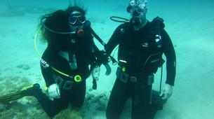 Scuba Diving-Malta-PADI Discover Scuba Diving in Exiles Bay, Malta-5