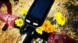 Mountain bike-Athens-Mountain bike tours in Parnitha, Athens-2