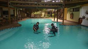 Scuba Diving-Zanzibar-Discover Scuba Diving in Matemwe, Zanzibar-5