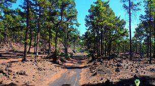 VTT-La Palma-Mountain biking excursions in La Palma-6
