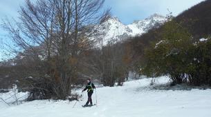Snowshoeing-Picos de Europa National Park-Snowshoeing excursions in Picos de Europa-5