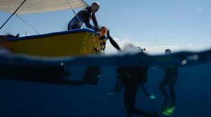 Scuba Diving-Nafplio-Adventure dives for certified divers in Nafplio-2