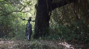 Vélo de Descente-Porto Vecchio-Randonnée VTT Plaine à Porto Vecchio-4