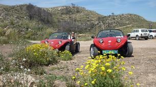 Quad biking-Mallorca-Buggy tours near Palma, Majorca-3