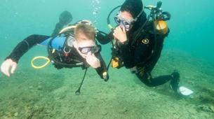 Plongée sous-marine-Pula-First Dive in Pula, Croatia-1