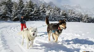 Dog sledding-Province of Huesca-Mushing excursions in Tena Valley, Huesca-14