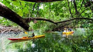 Canoë-kayak-Raiatea-Remontée de la rivière Faaroa en kayak sur l'île de Raiatea-3