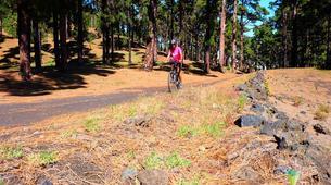 VTT-La Palma-Mountain biking excursions in La Palma-5