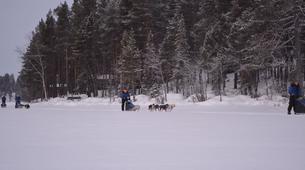 Dog sledding-Kiruna-Dog sledding excursions in Svappavaara near Kiruna-8